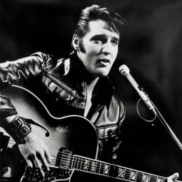 Elvis-Presley-image-elvis-presley-36764826-480-480